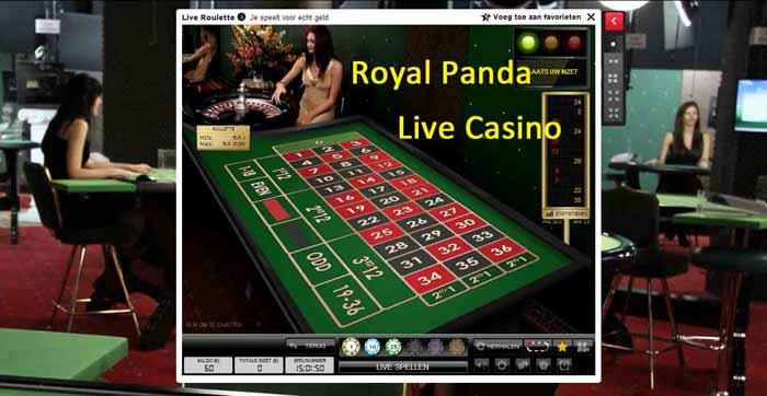 Royal-Panda-Live-Casino